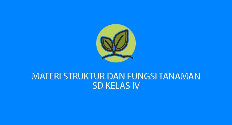 struktur fungsi Tanaman kelas IV SD